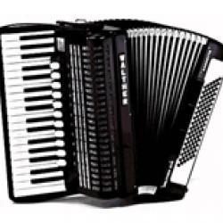 accordeon t/m 20 jaar
